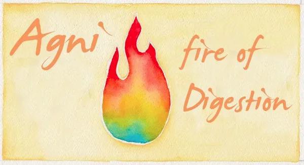 agni ou fogo digestivo