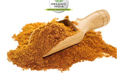 NOVIDADE – Rapadura (Açúcar de cana integral) Bio Organic India™